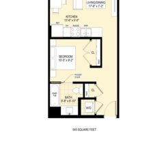 Studio Apartment - 545 sq ft
